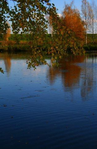 Кострома. Музей деревянного зодчества .Осенний пейзаж. Автор Светлана Павлова