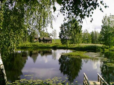 Кострома. Музей деревянного зодчества .Природа в музее деревянного зодчества
